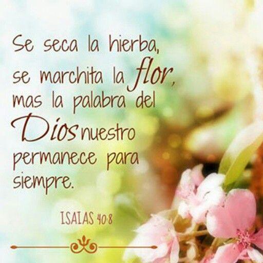 Isaias 40:8