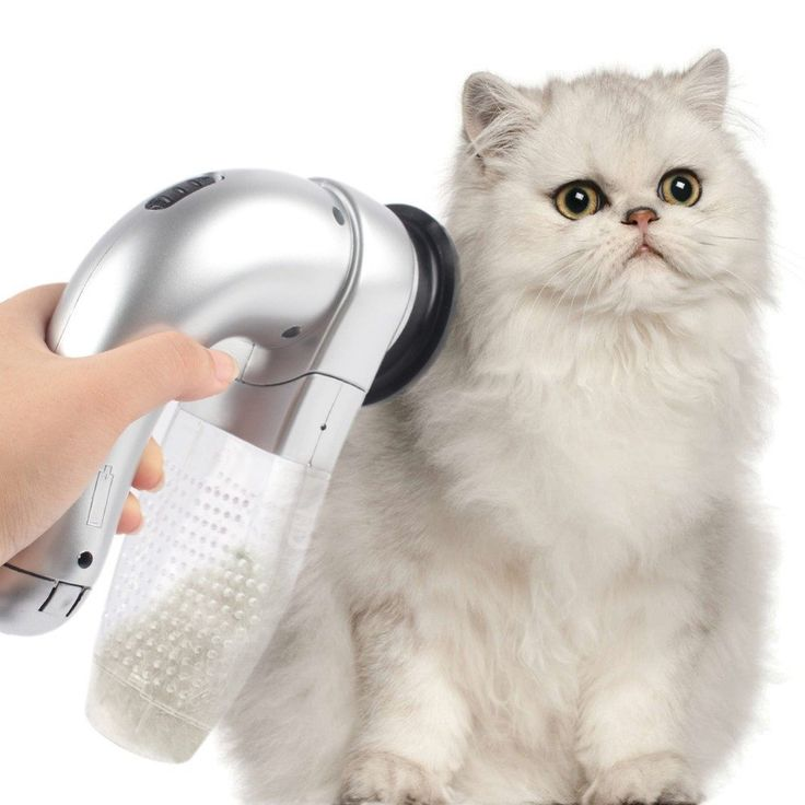 Cat Hair Vacuum ncredible cordless Cat Vac that vacuums to collect Cat hair while you groom. The mess free way to control shedding. Clean up Cat hair, before it gets everywhere!   What You Gey & What It Does:      Easy to use pet preferred grooming system with massaging nubs and gentle suction that removes shedding fur that allows you to groom your Cat easier than ever.     No harsh wire bristles, no snagging or pulling and no fur flying mess.     It works perfectly on short or long haired…