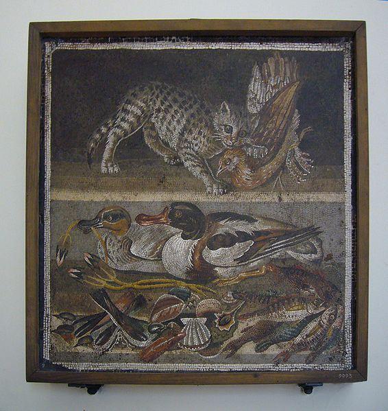 Mosaico con gatto che cattura una gallina, anatre, molluschi, pesci, uccelli - dalla Casa del Fauno di Pompei - Museo Arch. Naz. Napoli