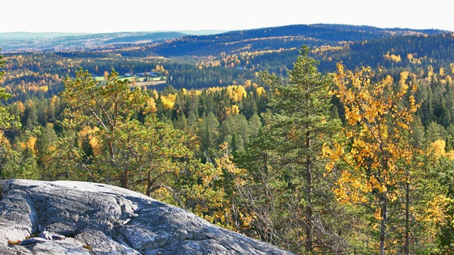 Vuokatti, Finland. It felt magical to stand there and admire the view!