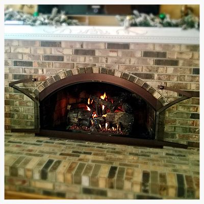 Arched Glass Fireplace Doors 31 best fireplace glass doors images on pinterest | fireplaces