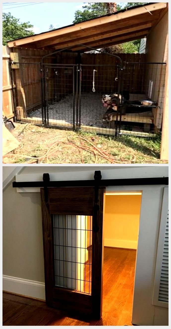 Top 5 Outdoor Dog Kennels Designed For Your Dogs Safety