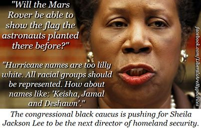 A biography and the courage of sheila jackson lee