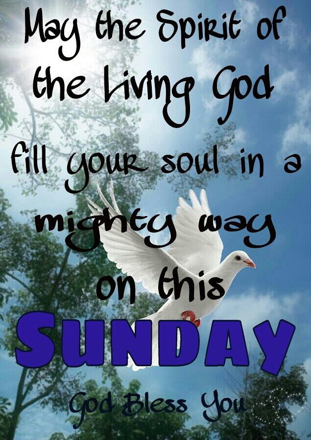 Have A Blessed Sunday Quotes. QuotesGram