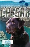 Caesar The War Dog 2: Operation Blue Dragon by Stephen Dando-Collins #rwpchat #furread