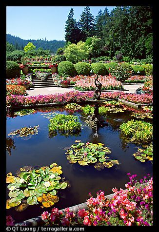 What do you know about Italian gardens?