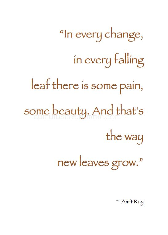 """~ Autumn ~ """"In every change, in every falling leaf there is some pain, some beauty. And that's the way new leaves grow."""" ~ Amit Ray #Fall #Quote"""