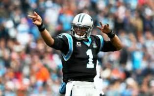 NFL indagará sobre alegadas expresiones de Ed Hochuli a Newton - http://www.tvacapulco.com/nfl-indagara-sobre-alegadas-expresiones-de-ed-hochuli-a-newton/