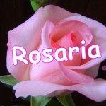 Buon Onomastico ...Rosaria !!!