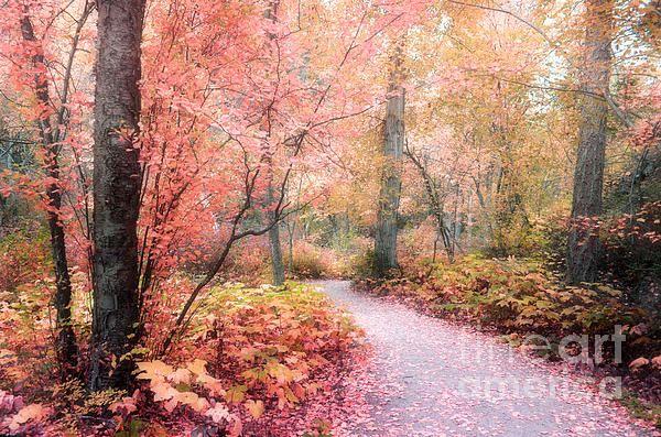 Autumn in Peachland, BC Canada