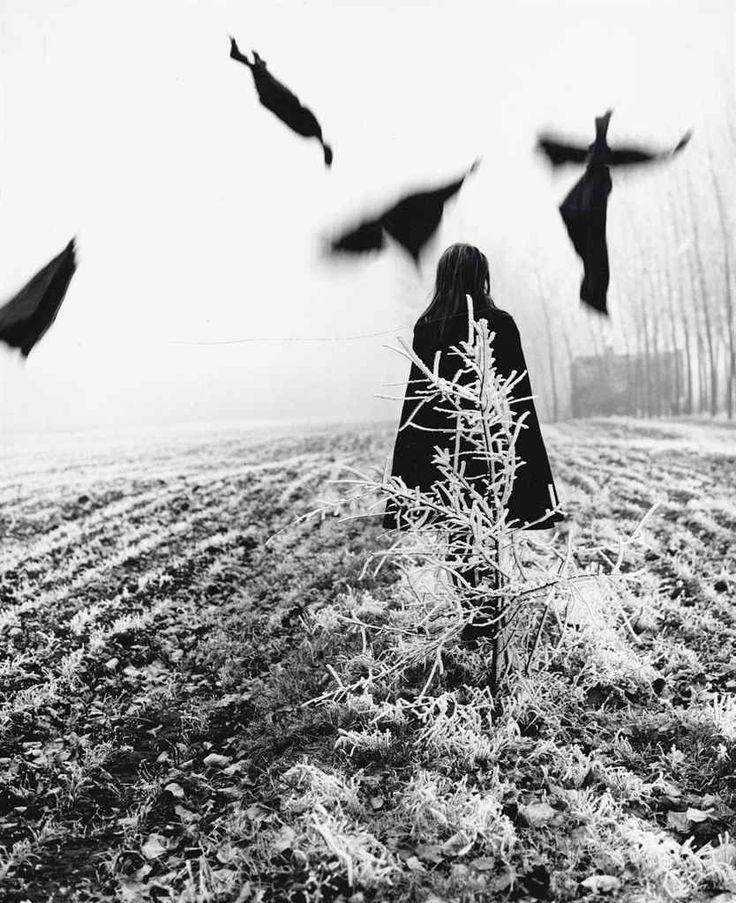 Scarecrow, 1968 by Mario Lasalandra