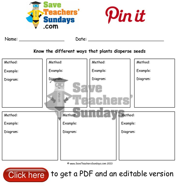 Methods of seed dispersal worksheet. Go to http://www.saveteacherssundays.com/science/year-2/400/lesson-2-seed-dispersal/ to download this Methods of seed dispersal worksheet. #SaveTeachersSundaysUK