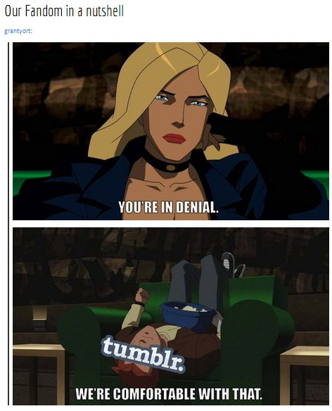This is basically the supernatural fandom after the season finale for season 9...... I'm still comfortable with being in denial.... The show this scene is from is called young justice (great show btw, I watch it with my little sister)
