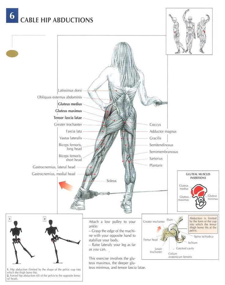 Here's a good exercise for your glutes and hip abductors - Cable Hip Abduction (Anatomy)