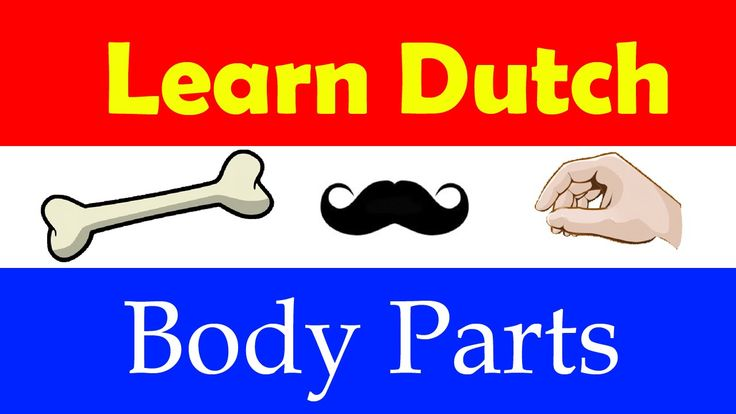 Learn Dutch Fast, Easy & Fun | Babbel