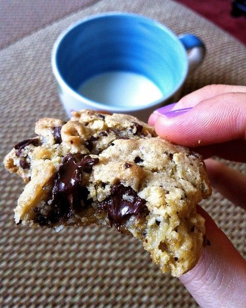 Oatmeal Coconut Chocolate Chip Cookies | Fat Girl Trapped in a Skinny Body