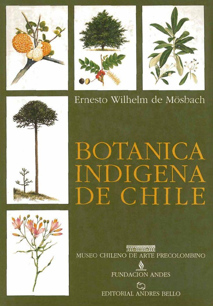 Botanica indigena de chile