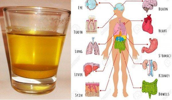 Woda kurkumowa – zdrowotne korzyści z picia jej codziennie rano.