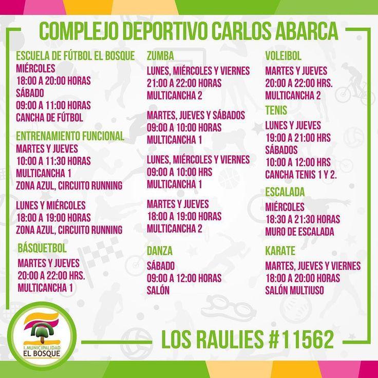 Talleres deportivos en el Complejo Deportivo Carlos Abarca. Más información en el fono 232091938