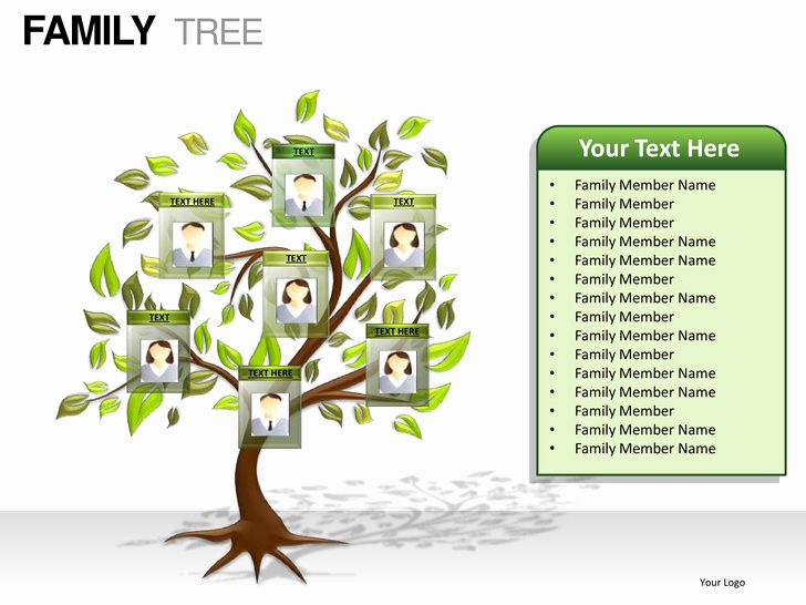 Family Tree Powerpoint Template Free Family Tree Template Family Tree Family Tree Template