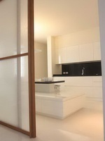 White polished lacquered kitchen