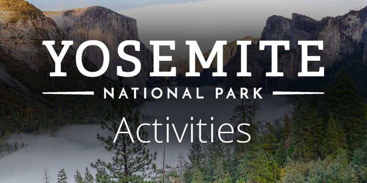 The Majestic Yosemite Hotel is Yosemite's only AAA® Four-Diamond hotel—an honor bestowed only on the finest hotels that offer the highest level of service.