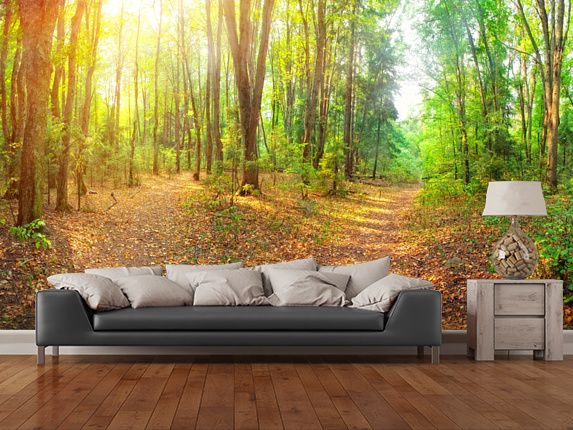Sunny Day Forest Panorama wall mural room setting
