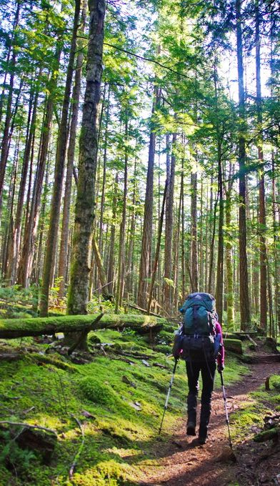 Backpacking the Sunshine Coast Trail: Sarah Point to Powell River