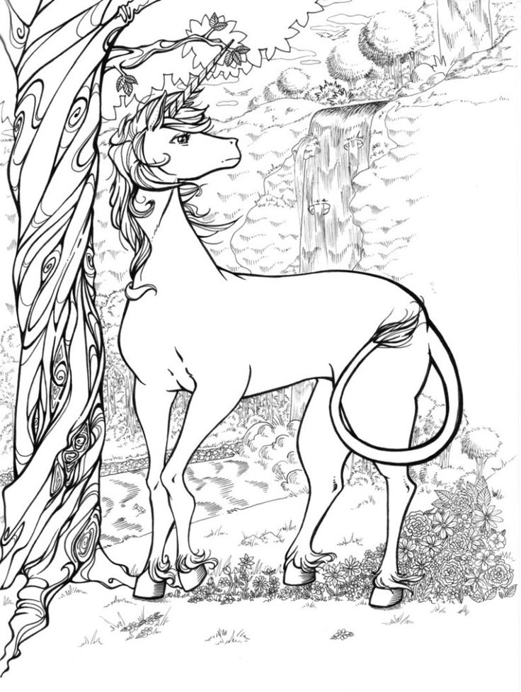 unicorns coloring pages - photo#28