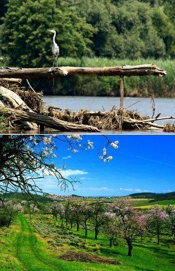 Balaton Uplands, National Park - Hungary
