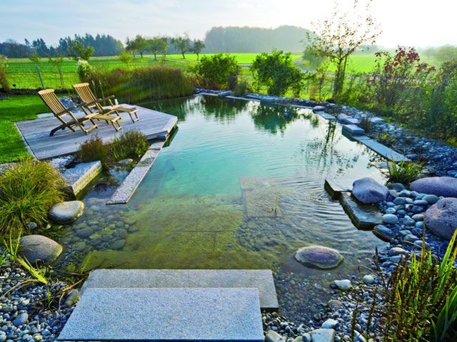 Afficher l 39 image d 39 origine natural swimming pool - Prix d une piscine naturelle ...