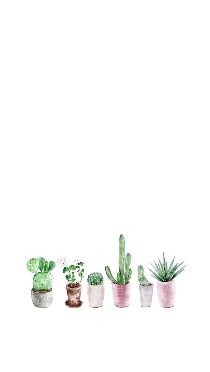 Free Watercolor Cactus Printable Watercolor Cactus Cactus