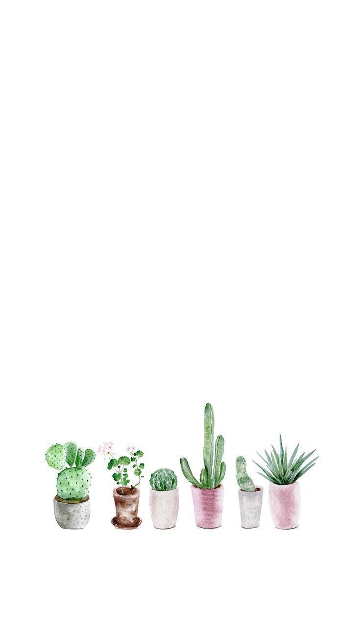 Iphone And Android Wallpapers Succulent Watercolor Wallpaper For