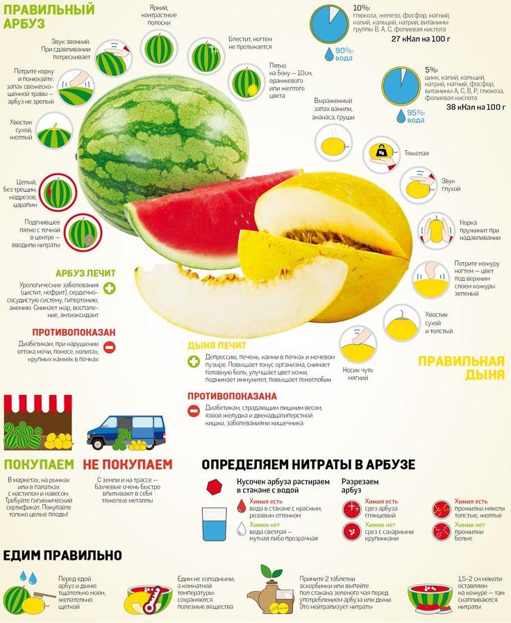 Как правильно выбирать арбузы и дыни. #vestiua