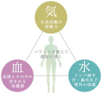 日ごろ生きていると、冷え性や肩こり、頭痛、無気力、寝起きの悪さなど、大きな病には至らなくとも小さな不調を感じることは多いのではないでしょうか。 私たち人間の体を構成する要素「気血水」という考え方が東洋医学には存在します。 気はエネルギーのことをさし、気力の気をイメージするといいでしょう。 血は血液のことをさし、体全身をめぐるものです。 水とは、血液以外の体液のことをさします。 それぞれが重要な役割を果たしており、どの要素も健康を維持する上で非常に大切な要素です。 どの要素が崩れても何らかの不調が現れます。 気血水とはなにか  出典:健伸道 体質を見ていく前に、東洋医学の基礎理論の1つ「気血水」(きけつすい)をご紹介させていただきます。 気血水は、相互に作用してバランスを取り合っている状態が一番いい状態とされています。 陰陽で言いますと、気が陽、血・水が陰にあたります。 そのため、気は血・水ともにバランスをとっている関係、血・水は、陰の間で相互にバランスをとっている関係となります。 特に、東洋医学では血・水に関連する不調は、気にも関係すると考えられております。…