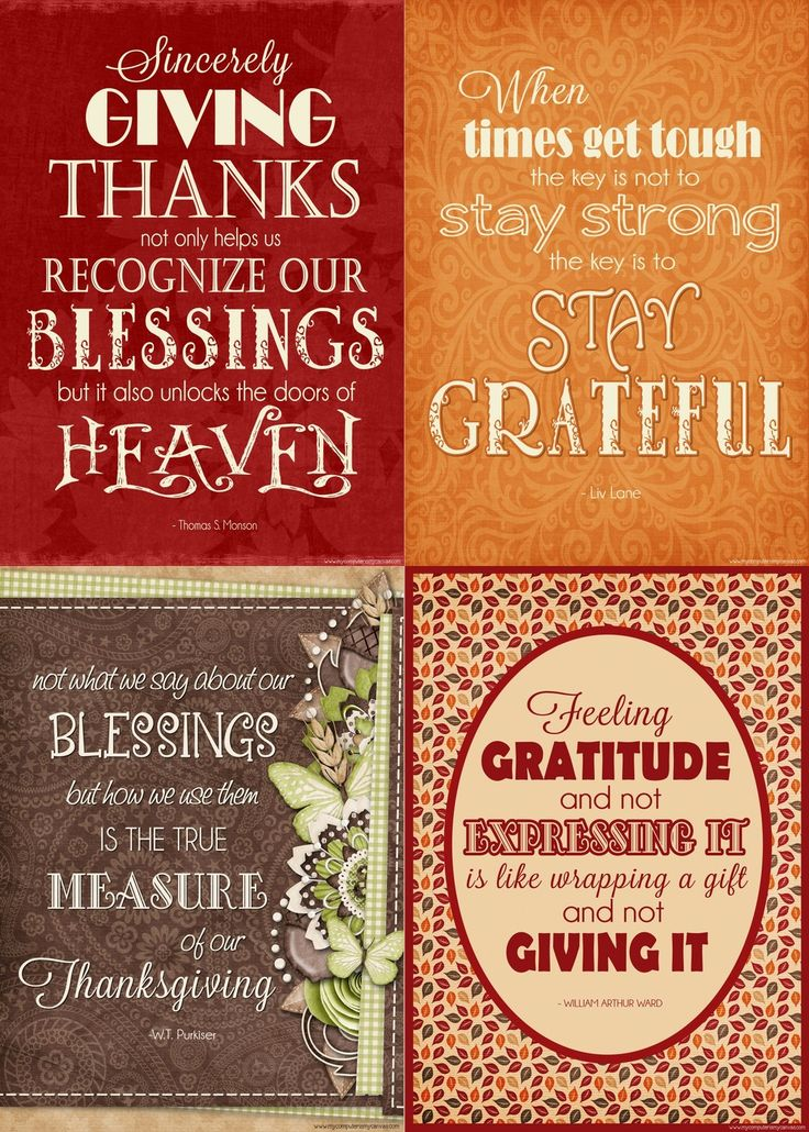 You Gratitude Quotes for Thanksgiving...