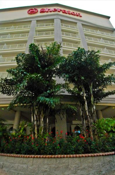 #Plants like these make for an exquisite entrance! #landscaping