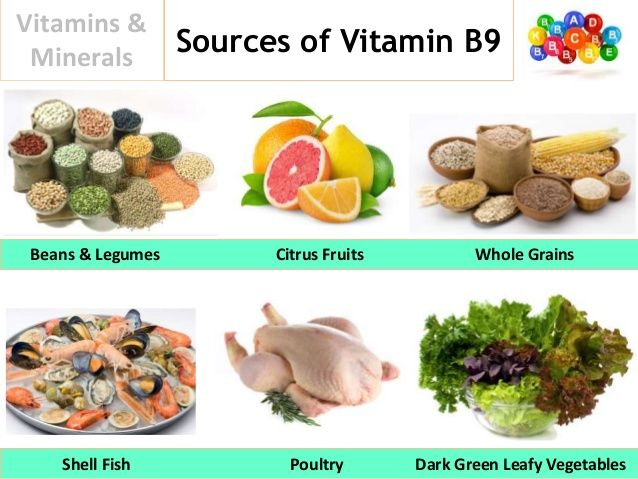 Vitamin B Sources Food Vitamin B Foods Food Food Animals