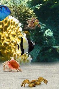 Top Android 3D Aquarium Live Wallpaper HD – 3D Aquarium Live Wallpaper HD Free Download