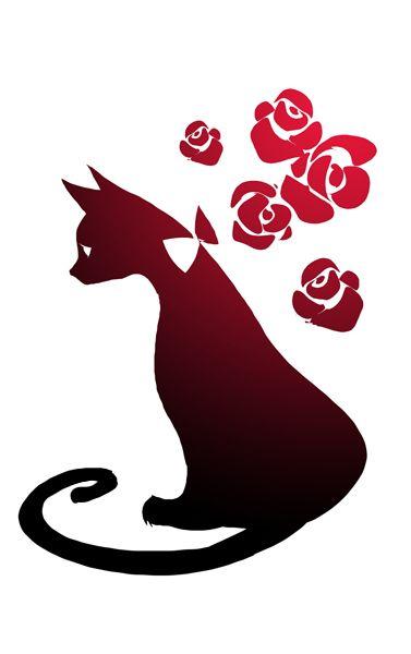 Cat  - Sho Murase