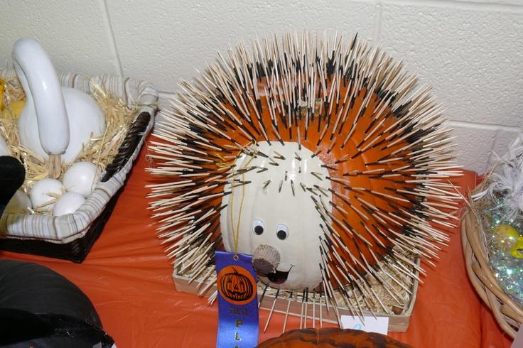 17 Best images about Bella's Porcupine Pumpkin on