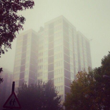 High-rise in the fog