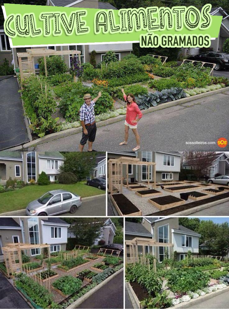 cultive alimentos nao gramados