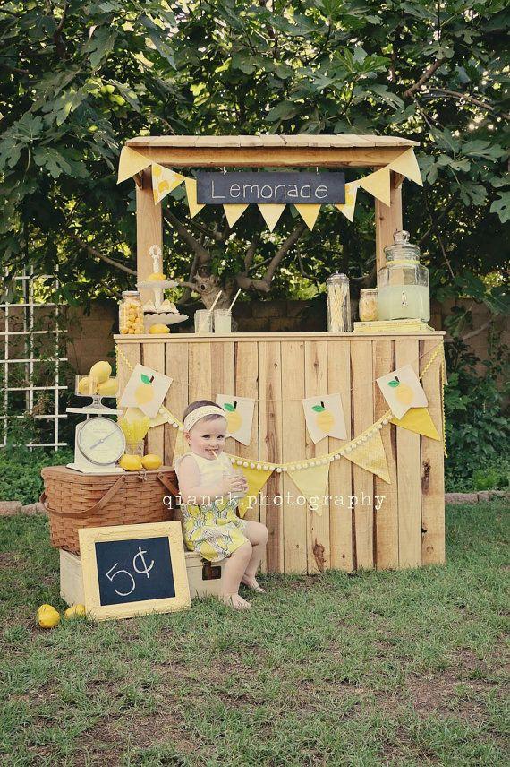 Bannière de citron, Lemonade stand Banner toile lemonade stand guirlande fanion, les accessoires de l