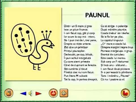 Poezii desenate PAUNUL