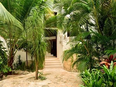 VILLA MIMAC Price just reduced to US$550,000  This spectacularly designed home is located less than 100 yards from the sea and has 5 bedrooms and 6.5 bathrooms with Talavera sinks, marble floors, and both a shower and Jacuzzi in the master bathroom.  The villa has 3 terraces and 2 balconies with outdoor lighting and sliding windows. An observation deck provides the final touch, with a plunge pool and surrounding exotic gardens at the ground level.