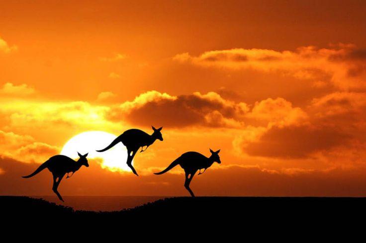 Australia adalah sebuah benua yang sekaligus menjadi nama negara. Negara benua ini memiliki kebudayaan yang majemuk dengan memiliki suku asli, Aborigin.