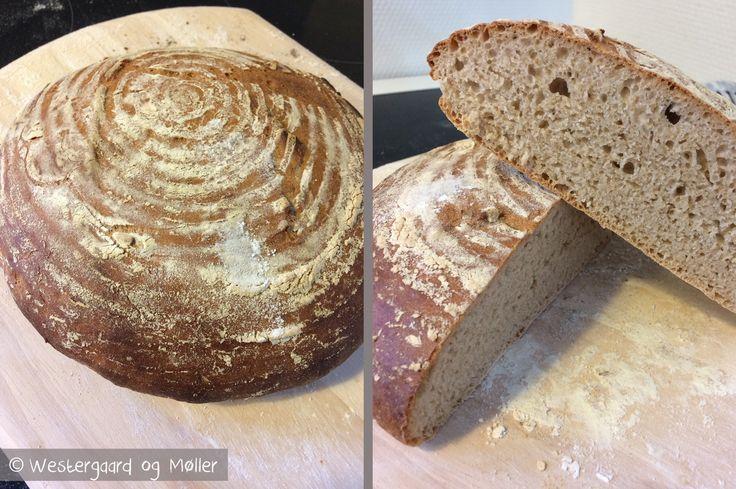 Se her hvordan du kan lave et hurtigt brød med ølandshvede. Det er lavet uden surdej, og med ingredienser de fleste har i køkkenet. Klik her.