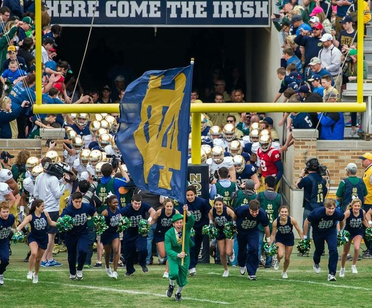 Notre Dame Football | 2014 notre dame in usa the notre dame leprechaun leads the notre dame ...