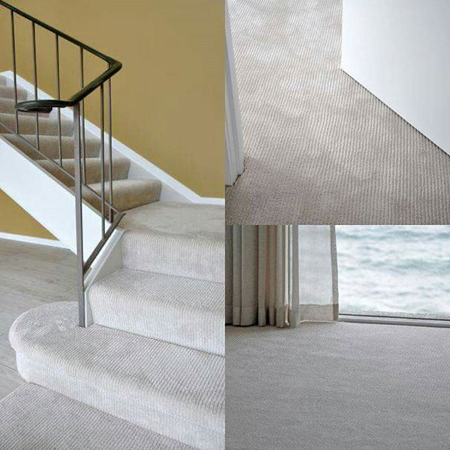 """The Patina Nuveau """"Wind Song"""" cut pile carpet brings a luxurious feel to any home. Total comfort underfoot in every room. #carpet #stairway #sourcemondialNZ #patinanuveau #interiordesign"""